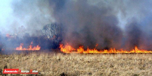 У Сербці горів сухостій. Пожежу гасили близько 5 годин
